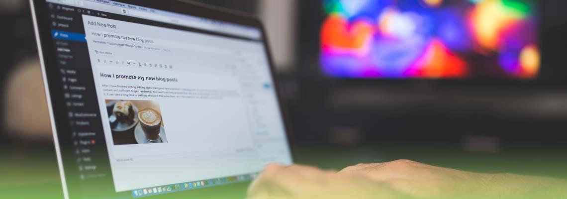 Wordpress training services Carlow